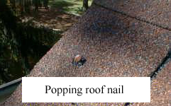 Popping Nails on Roofing Shingles